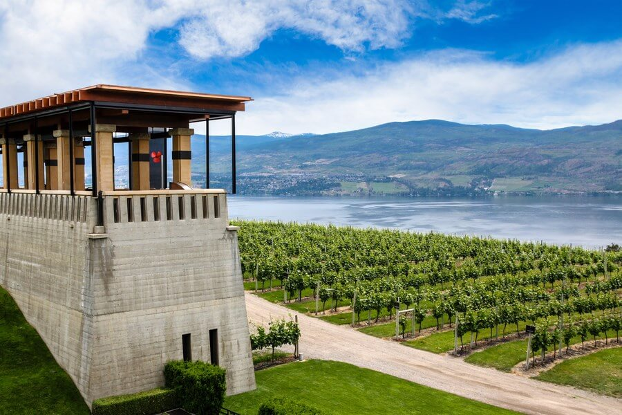 A beautiful landscape of a winery in Kelowna, British Columbia. Producing some of the best British Columbian wines!