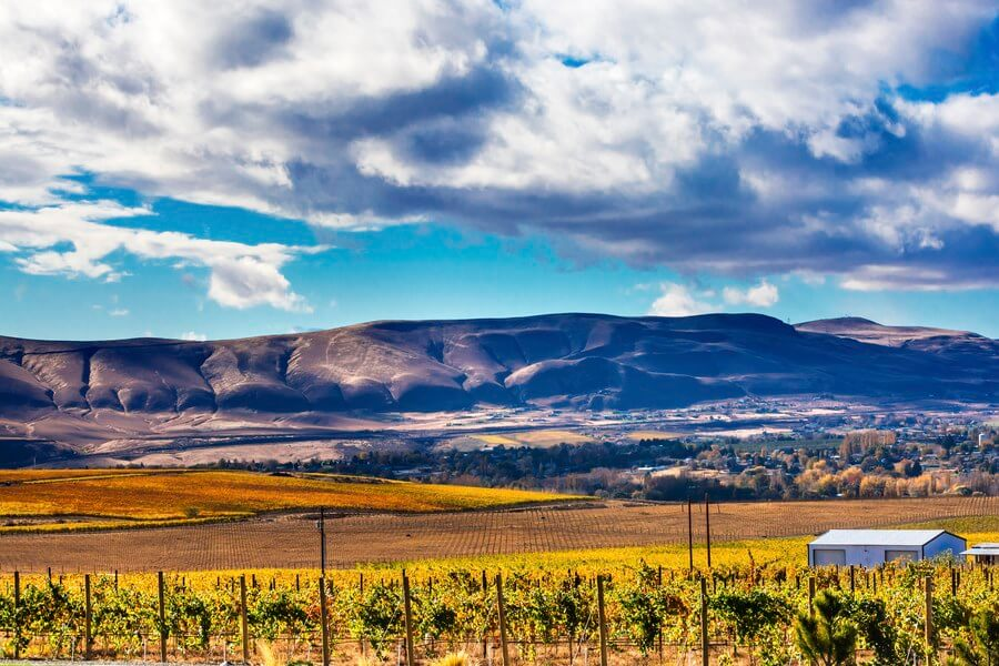 The Beautiful Rioja Wine Region!