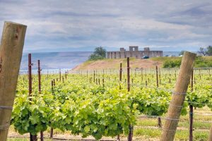 Washington State Wine: One Day Road Trip