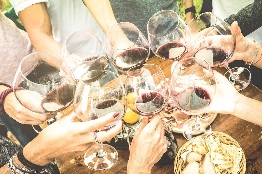 An amazing group of close friends enjoying cheering to life, practicing wine tasting basics for a future wine tasting.