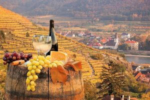 Wine Health Benefits: White Wine