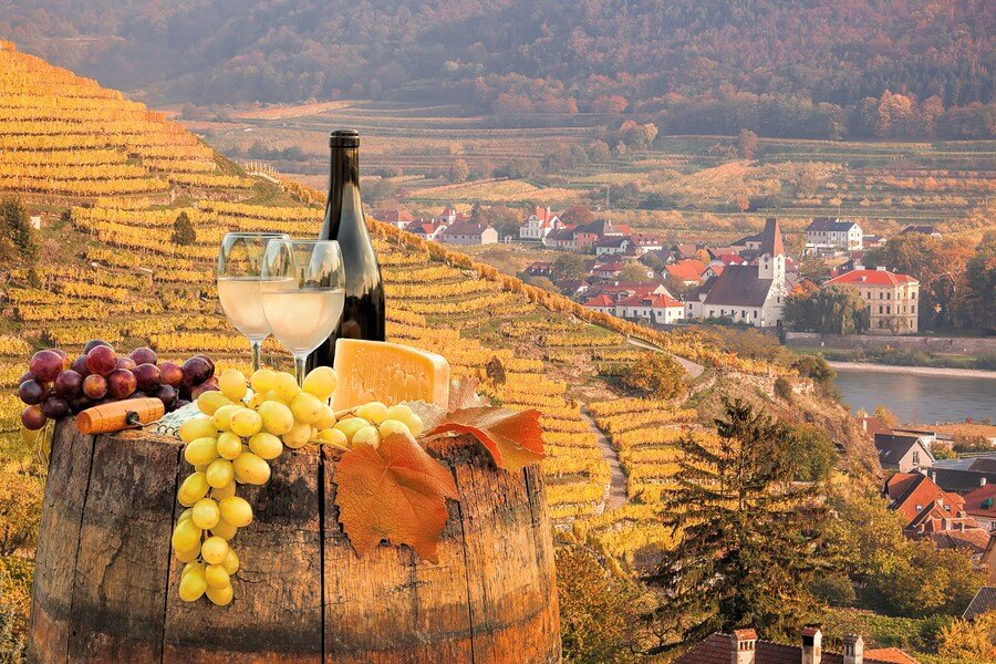 An amazing scene of wine, cheese and grapes, looking just as healthy as the wonderful wine health benefits they provide!