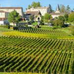 Bordeaux Wineries: One Day Road Trip