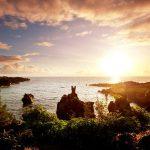 Hawaiian Wine Bars/Restaurants