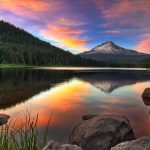 Oregon Wine: One Day Road Trip