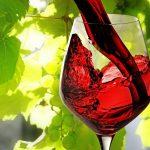 Sweet Red Wines: Top 10