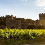 Wine Country: Napa Valley California