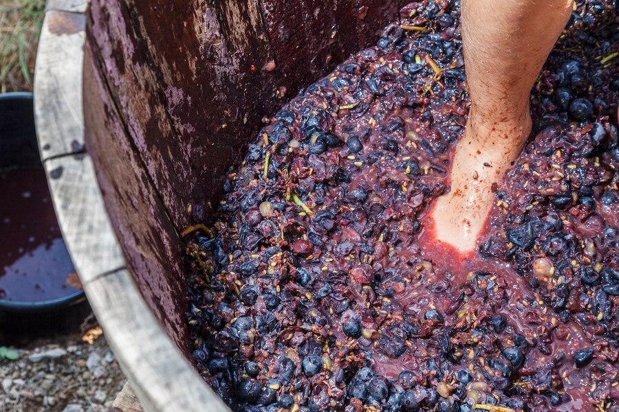 Wine Press Selecting A Proper Wine Press dp (1)