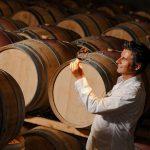 Wine Aroma Wheel: Understanding Wine