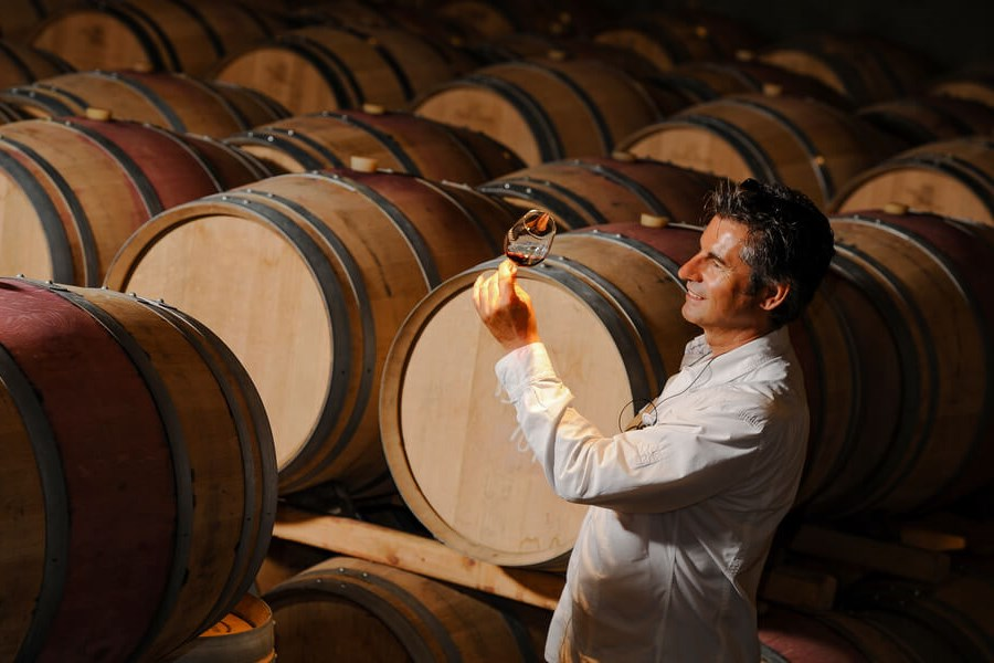 Wine Aroma Wheel Understanding Wine - A Wine Expert Taking in the Aromas Of A Gorgeous Wine!